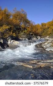 Beautiful autumn scene: around swiftly-flowing water in Abisko nationalpark, Lapland, Sweden.