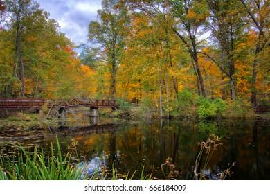 A beautiful autumn scene at Mallard Lake  inside Oak Openings Preserve Metropark in Toledo Ohio.
