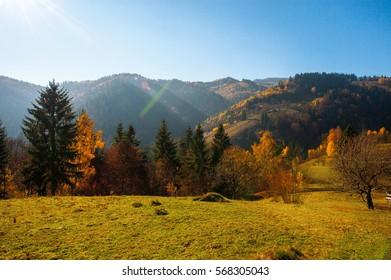 Beautiful autumn scenery of the Carpathian Mountains