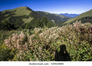 Beautiful autumn scenery in Taiwan, The fallen leaves beautiful color picture, Asia - Beautiful landscape of highest mountains blue sky in fall seaon at Taroko National Park, Taiwan