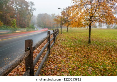 Beautiful autumn view in Princeton, New Jersey featuring road with light trails next to the tree with fallen leaves on foggy morning