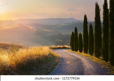 beautiful autumn winding country road leading through rural countryside in the Italy Tuscany District with evening sunlight.