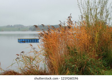 Beautiful autumnal scenery with a view to a lake, blue bathing island in the background,  reed in the foreground, Bavaria