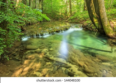Beautiful babbling brook and cascades in forest,Nera Gorges-Beusnita National Park,Romania