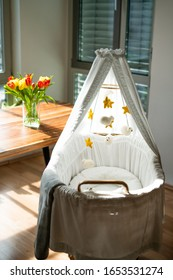 Beautiful Baby Bassinet in the sunglight