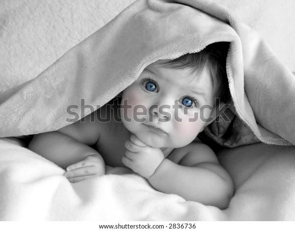 Beautiful Baby Black White Blue Eyes Transportation Stock Image 2836736