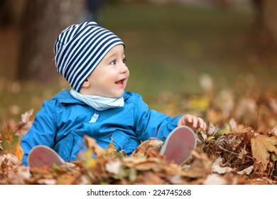 Beautiful baby crawling in fallen leaves