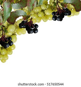 Beautiful background of aronia and grapes
