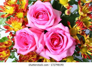 Beautiful background of bright colorful flowers closeup