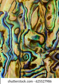 beautiful background of macro shot of abalone or mother of pearl shell veneer