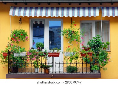 Beautiful Balcony Flowery Garden Close-up And Yellow Residential Building Concrete Wall In The Background