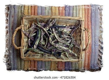 Beautiful Basket of Organic Home Grown Rattlesnake and Purple Beans on a Colorful Woven Place Mat