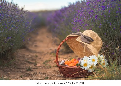 Beautiful basket with peaches, chamomile flowers and french baguettes with a straw hat on top of it in an amazing blooming lavender field in Pazardzhik town near Plovdiv, Bulgaria