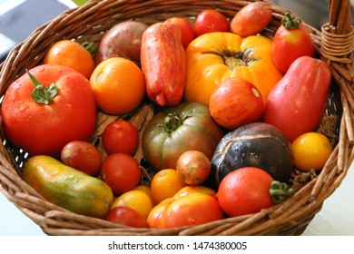 Beautiful basket with a lot of vegetables