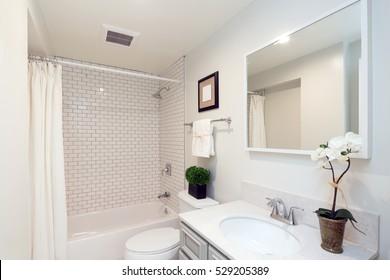 Beautiful Bathroom in white.