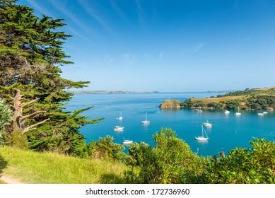 Beautiful bay on Waiheke Island, New Zealand