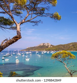 Beautiful bay with yachts surrounded by pine trees, clear turquoise water in Porquerolles, the island in southern France. Holidays in France.