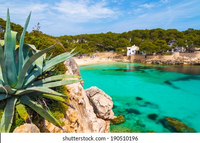 Beautiful beach with azure turquoise sea water, Cala Gat, Majorca island, Spain