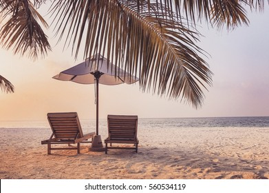 Beautiful beach background for honeymoon and romantic couples retreat background. Loungers as sun beds in twilight colors and palms.