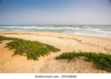 Beautiful beach by the shores of the Mediterranean sea in Hammamet, Tunisia