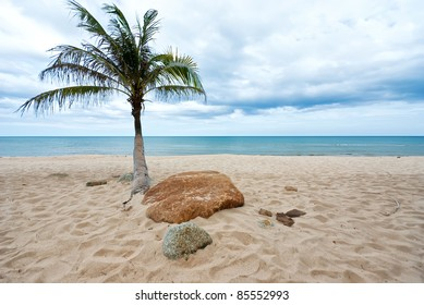 beautiful beach with coconut palm tree, Thailand