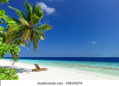 beautiful beach with coconut palm trees and wooden deck chair on white sand with ocean view