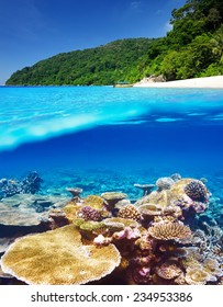 Beautiful beach with coral reef bottom underwater and above water split view