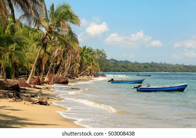 Beautiful beach in Costa Rica (Caribbean Sea)