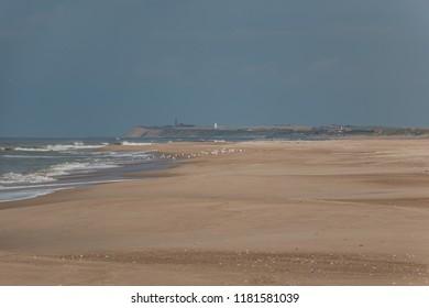 beautiful beach in denmark