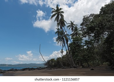 Beautiful beach at Drake Bay on the Pacific Ocean in Costa Rica