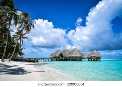 Beautiful beach landscape at Gili Lankanfushi in the Maldives