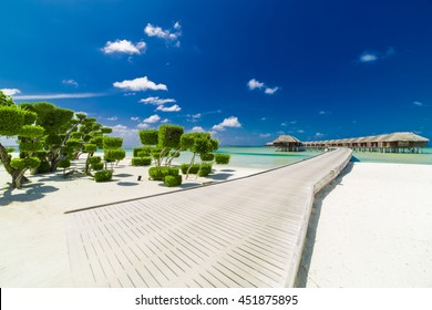 Beautiful beach landscape at Lux South Ari Atoll in the Maldives