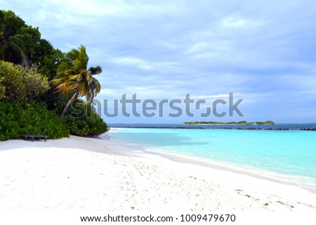 Beautiful beach in Maldives with turquoise water and palm trees