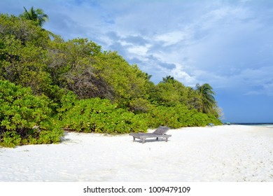 Beautiful beach in Maldives with vegetation on the beach