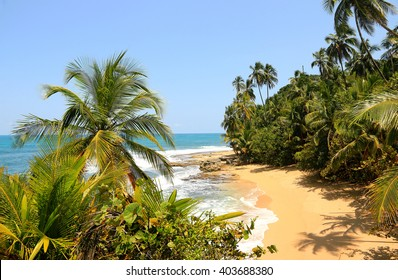 Beautiful beach in Manzanillo, Costa Rica (Caribbean Sea)