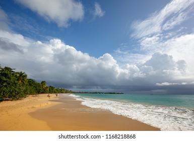 Beautiful beach in Martinique, Caribbeans. Caribbean Martinique. les salines beach