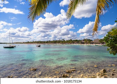 Beautiful beach on the Caribbean coast. Turtle Beach in Akumal Bay.  Tropical Beach in Quintana Roo, Yucatan, Mexico