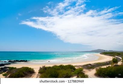 Beautiful beach on Galapagos Isabela island, Ecuador