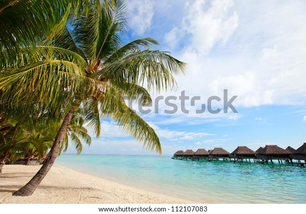Beautiful Beach On Moorea Island French Royalty Free Stock