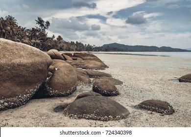 beautiful beach on tropical island