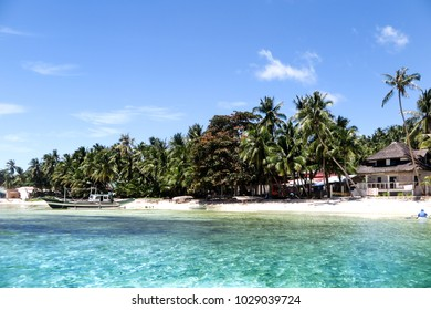 Beautiful beach with palm tree(Philippines)