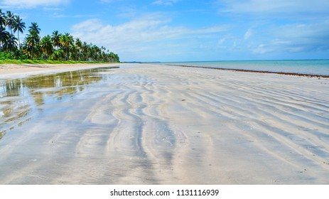 Beautiful beach with palm trees in Japaratinga, near Maragogi, state of Alagoas, Brazil