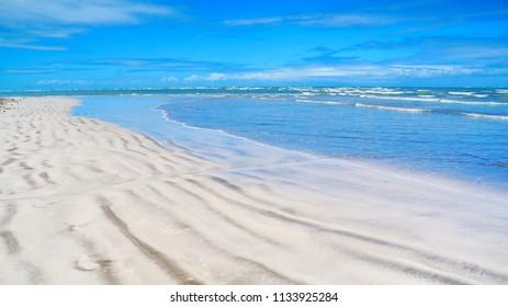 Beautiful beach with palm trees in Maragogi, state of Alagoas, Brazil