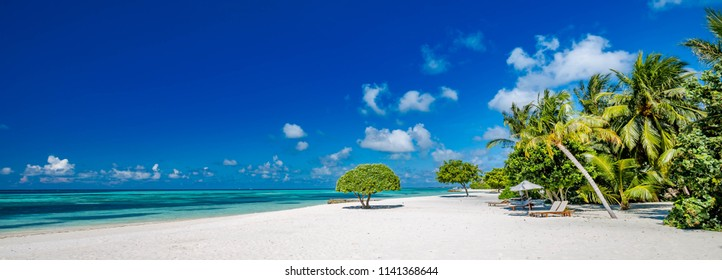 Beautiful beach with palm trees and moody sky. Summer vacation travel holiday background concept. Maldives paradise beach. Luxury travel summer holiday background banner concept.