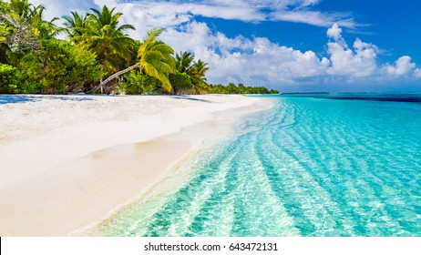 Beautiful beach with palm trees and moody sky. Summer vacation travel holiday background concept. Maldives paradise beach. Luxury travel summer holiday background concept.