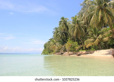 beautiful beach with palm trees in panama