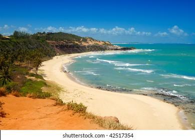 Beautiful beach with palm trees at Praia do Amor near Pipa Brazil