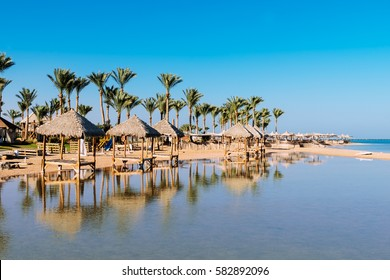 Beautiful  beach with palm trees at sunset, Sharm El Sheikh,  Red sea, Egypt