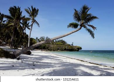 Beautiful beach with palms in Kenya 02