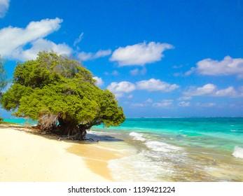 The beautiful beach /Saipan